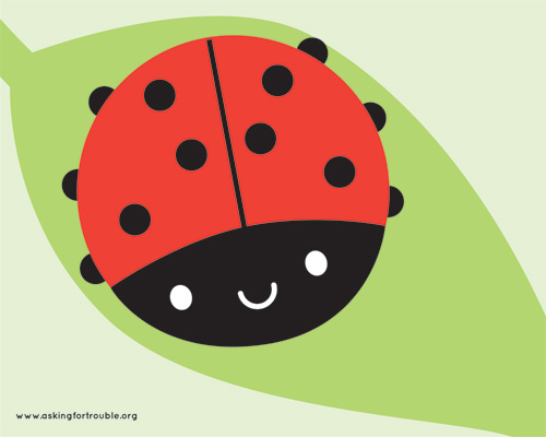 Ladybird desktop wallpaper