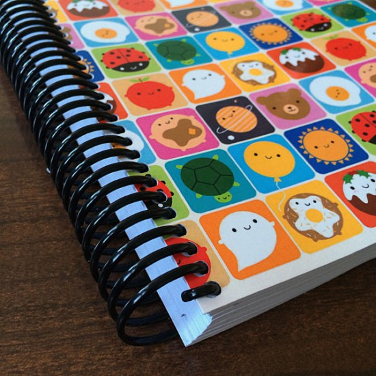 spiral bound 5 year diary