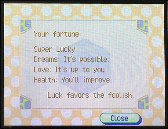 wild world fortune