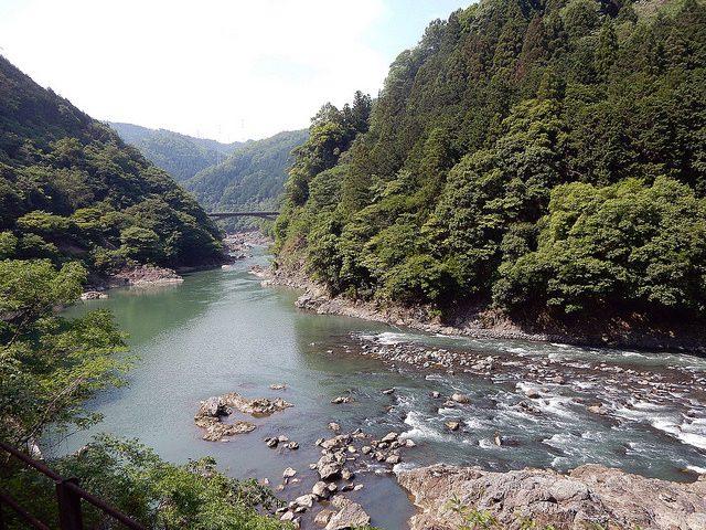 arashiyama - marceline smith