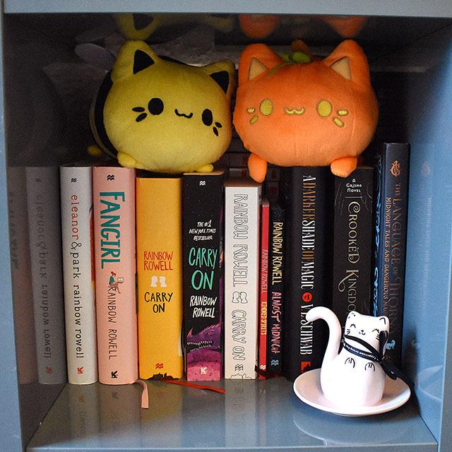 meowchi bookshelf