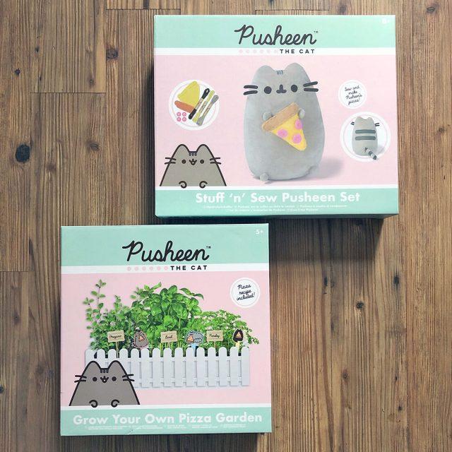 Pusheen craft kits