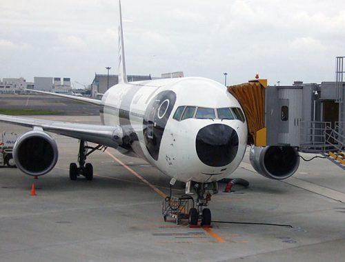 narita airport panda plane - marcelinesmith